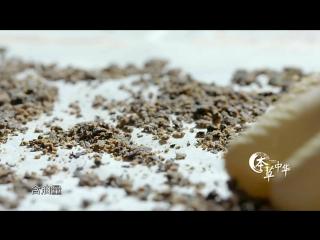 本草中华.Herbal.China.City.2017.EP05.WEB-DL.1080P.X264.AAC.Mandarin.CHS.HQC