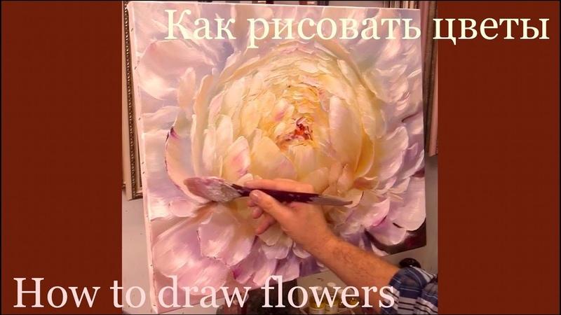 Пион. Быстрый этюд. Как рисовать цветы маслом. Peony. How to draw flowers