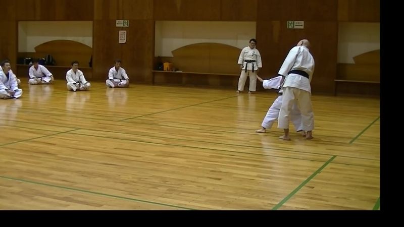 JKF 平安二段 Heian nidan Seminar by Noboru Kato 2017-05-20@Nagaoka 全空連基本形三