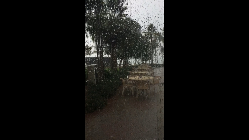 Одно утро с дождем в Эмиратах)