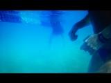 Когда пытаешься снять красивое видео под водой, а получается вотето