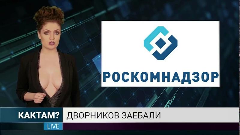 Новости про Telegram. Новости, которые мы заслужили. Жесть в прямом эфире. Блокировка Телеграмма