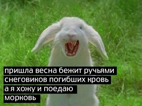 http://cs616929.vk.me/v616929344/73f4/fAtr4tDJkPM.jpg