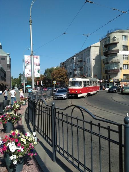 Фото -54315157