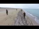 Каспий-Антитеррор-2017-- КНБ показал кадры штурма захваченных объектов - YouTube