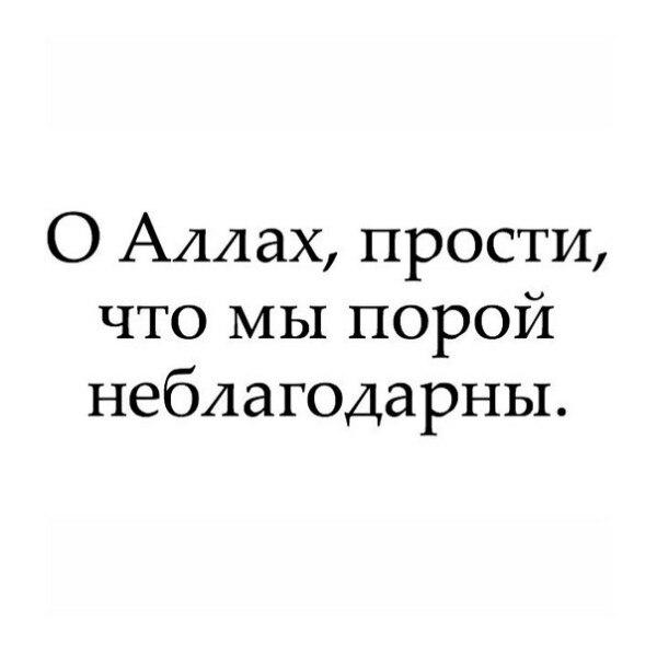 Фото №456247050 со страницы Аиды Салеевой