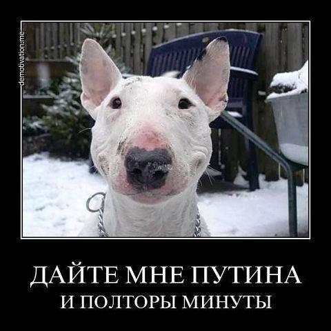 Россия не позволяет проведение следственных действий по делу Януковича на своей территории, - Горбатюк - Цензор.НЕТ 5071
