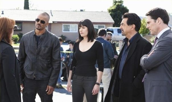 «Мыслить как преступник» закроют после 15 сезона