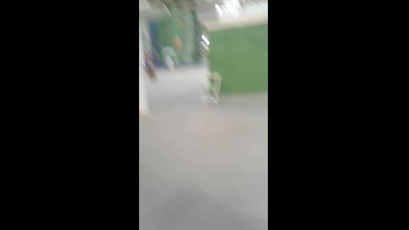 зел парк