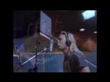 Metallica - (Nothing Else Matters )