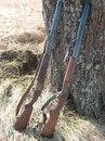 Куплю ружье охотничье гладкоствольное ИЖ-27 или ТОЗ-34 - Прочие услуги в Красноярске.