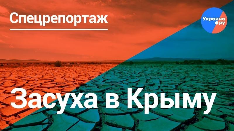 К чему привело перекрытие Северо-Крымского канала?