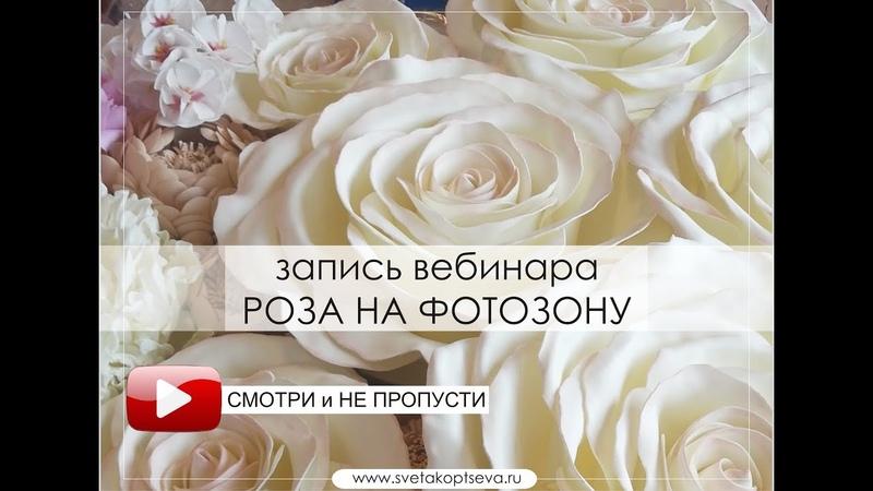 Роза на фотозону своими руками. Быстрая экономная сборка