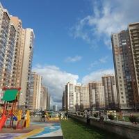 Недвижимость Санкт-Петербурга. Переезд и покупка квартиры.
