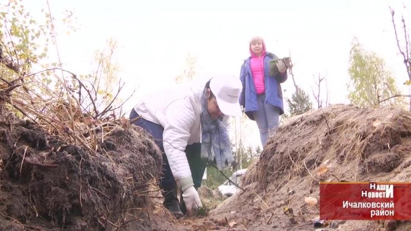Подари лес другу В нацпарке Смольный в Мордовии снова высаживали сеянцы сосны
