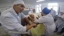 Смещение сычуга у коровы влево Хирургическое решение