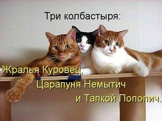 http://cs425823.vk.me/v425823100/8921/P4LYuh-juZs.jpg