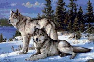 Схема вышивки пара волков.