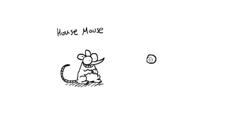 Simon Draws_ Mice