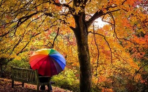 - Быть может, во всём виновата осень;