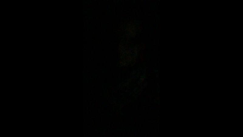 Королина Циммер — Live