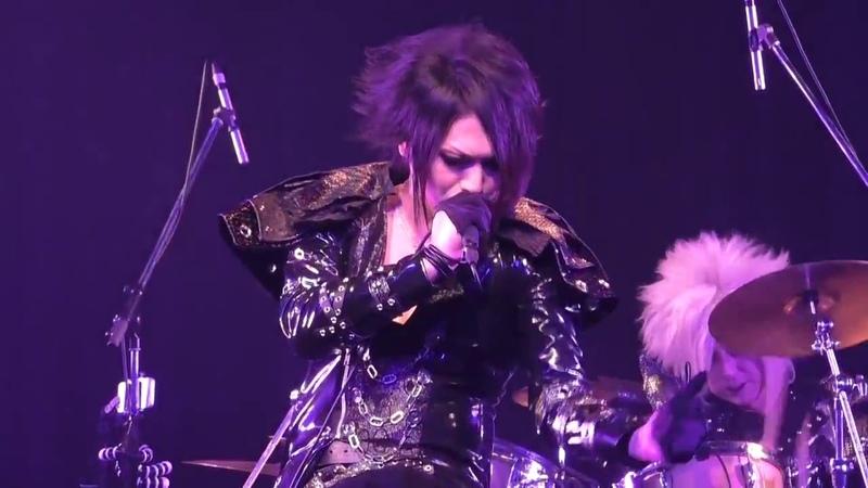 Tokami 【Dictator】LIVE