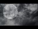 [†СТРАШНЫЕ ИСТОРИИ ОТ ВОРОНА†] История На Ночь - Шкурник