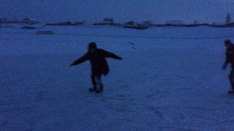 саска на льду
