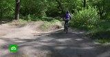 Жителям Старого Оскола грозит штраф в 3,5 млн ржублей за благоустройство парка