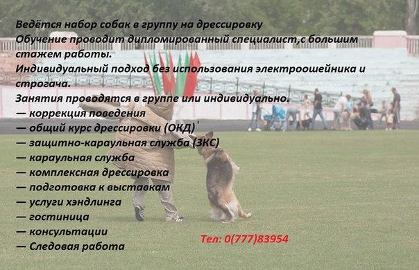 http://cs620621.vk.me/v620621368/f8e5/LRJcg_TjpUU.jpg