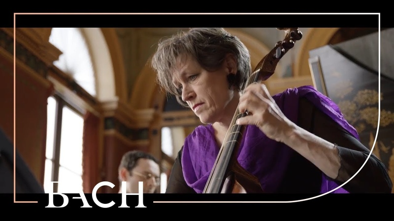 Bach - Sonata for viola da gamba in D major BWV 1028 - Van der Velden | Netherlands Bach Society