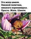 Дмитрий Летюк фотография #11