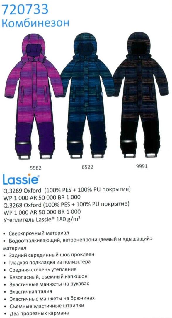 Зимний комбинезон 720733-5582