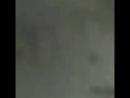Мишин др 3