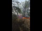 Видео пожара на новосальске. 16.08.18. Сальск главный
