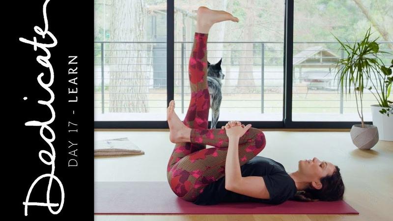 Dedicate - Day 17 - Learn | Yoga With Adriene