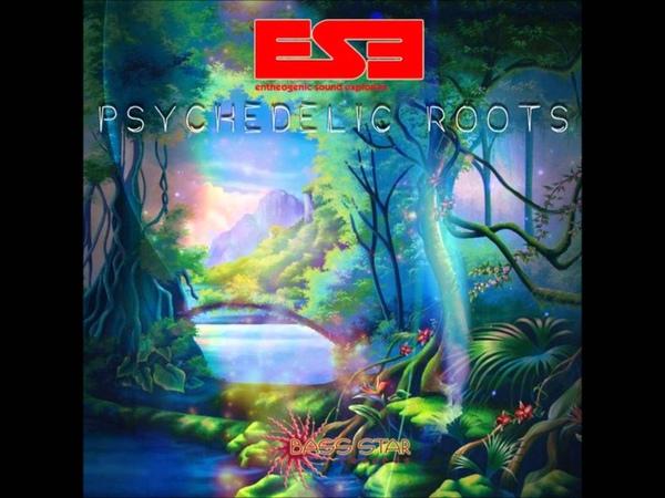 Entheogenic Sound Explorers Psychedelic Roots Full Album
