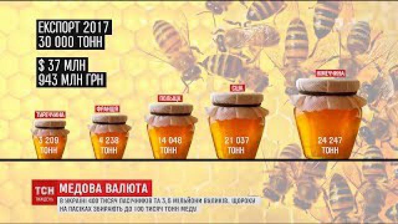 Зі своїм якісним медом Україна вирвалася в лідери світового експорту