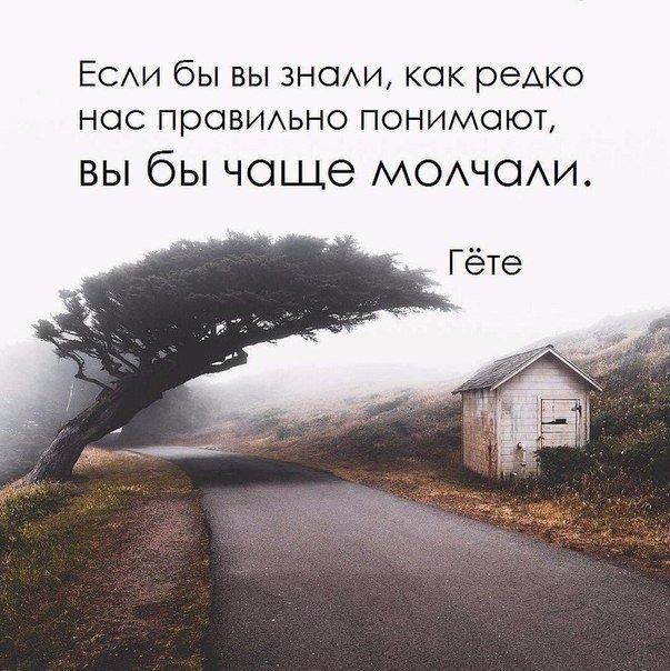 Фото №456258767 со страницы Tania Olyva