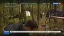 Новости на Россия 24 • Военные следователи будут разбираться в причинах крушения Ми-8