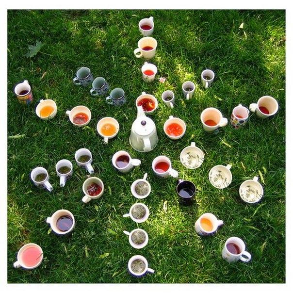 чай на здоровье