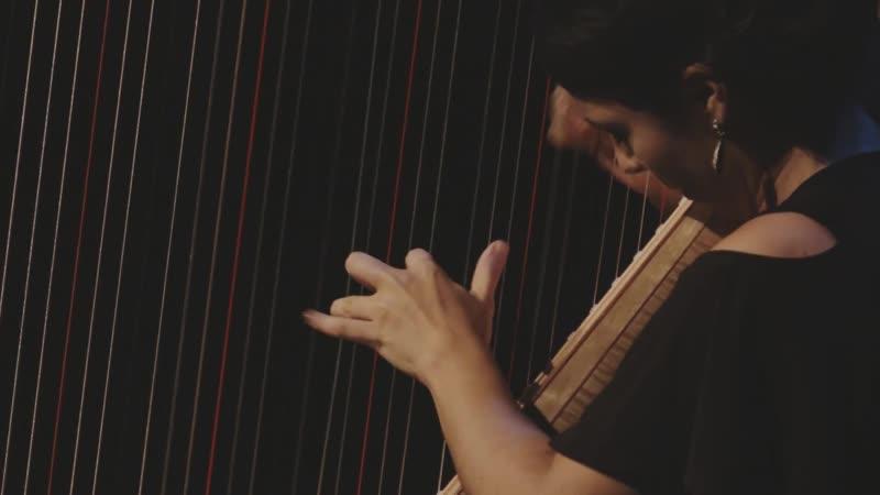 1004 (5) J. S. Bach - Partita No 2 in D minor, BWV 1004 5. Chaconne - Anneleen Lenaerts , harp