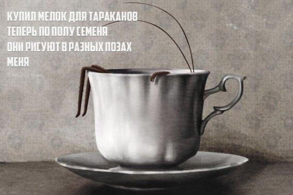 https://pp.vk.me/c618323/v618323497/231b1/FwdToWlICS0.jpg