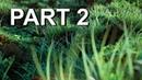 How to make Procedural Nature in Blender Part 2 Iridesium
