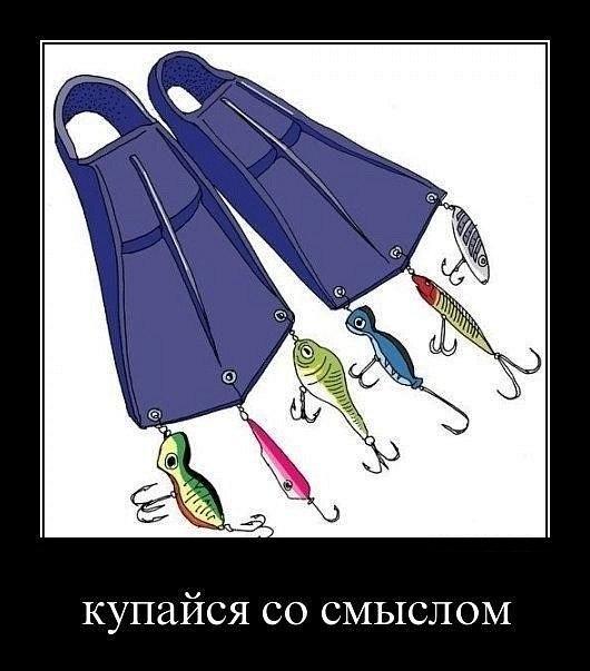 http://cs614826.vk.me/v614826782/7a51/4dec59mkpcc.jpg