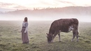 A farewell song for my cow - Ancient Swedish Herdingcall