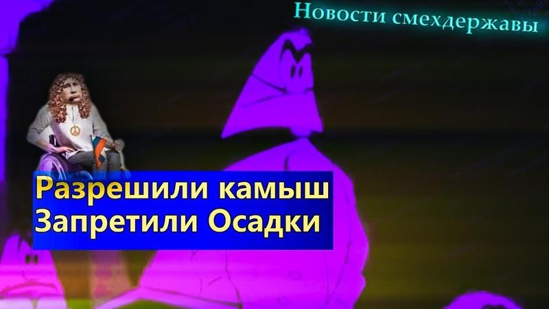 Россиянам разрешили камыш А так же автозаки для инвалидов