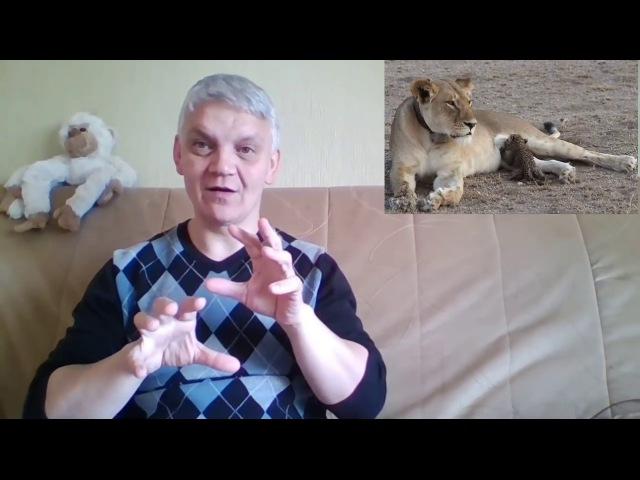 новости 15 июля для глухих! ziņas zimju valoda! deaf news!
