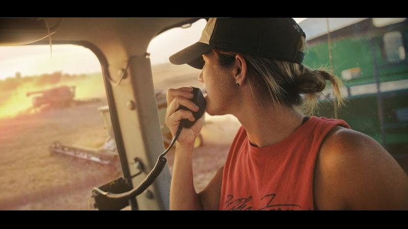 Wheat Harvest 2018 Zeka Farms