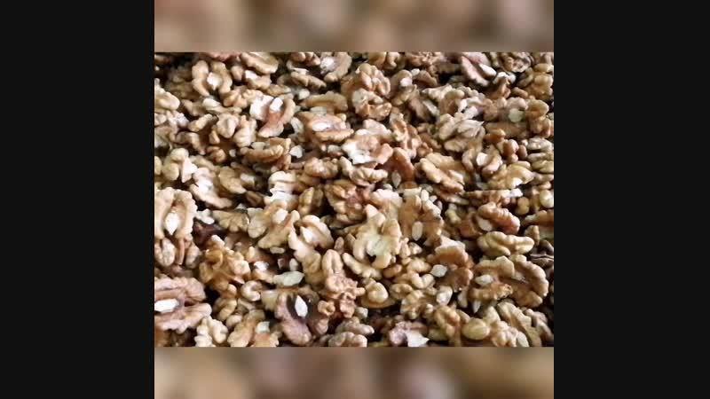 Грецкий орех | Тамбов | Белкины запасы